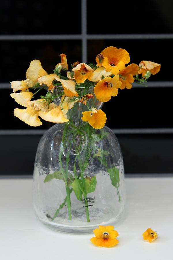 blomknyte_orangeblomma